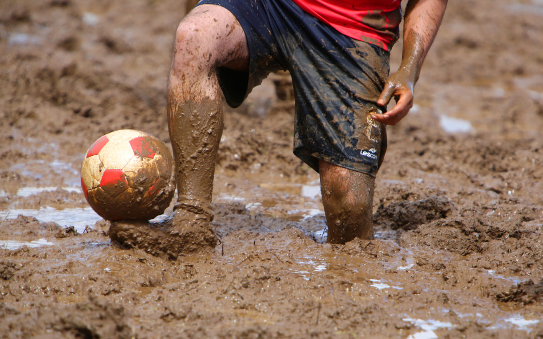 World Cup Fever – Swamp Soccer madness